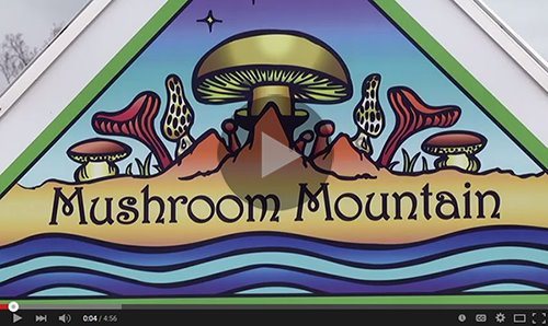 Click to view Mushroom Mountain video