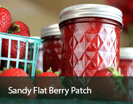 Sandy-Flat-Berry-Patch