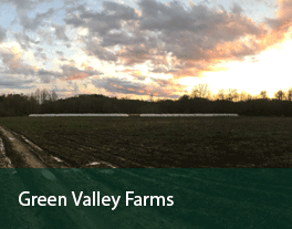 Green-Valley-Farms