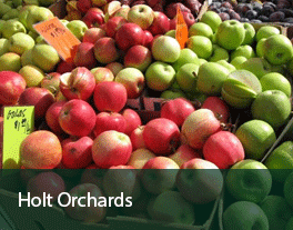 Holt-Orchards